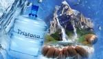 Доставка воды ТМ «Tristana»